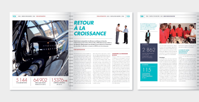 Profil Groupe CFAO 2010 - rapport d'activité